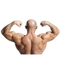 Укрепление мышечного корсета: за и против
